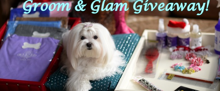 RULES + VIDEO == 12 Days of Thanksgiving 'GROOM & GLAM GIVEAWAY!'