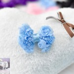 "2"" LACEY ROSEY POSEY Bow Clip"