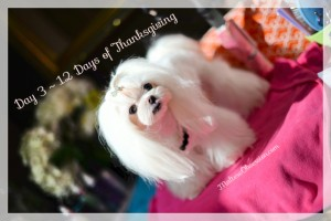 Day 3 Groom & Glam Giveaway