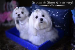 Groom & Glam Giveaway