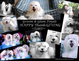 Happy ThanksGIVING! Groom & Glam Giveaway Finale