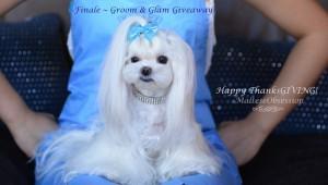 Finale - Groom & Glam Giveaway