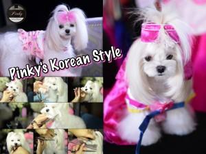DSC_4560_PinkyKoreanPinkyyoutube